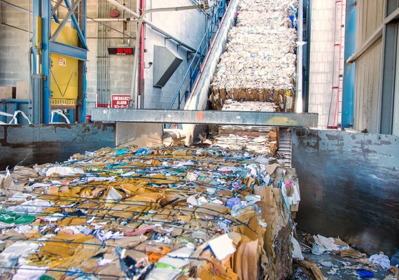 Pulp and Paper for Mills and Converters