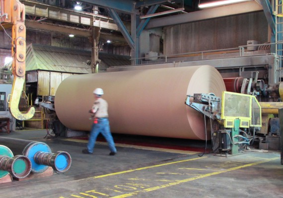 Kraft Linerboard and Corrugating Medium